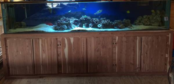 400 gallon aquarium & stand - $1200 (East Milton )