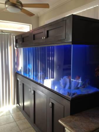 giant aquariums Tanks 300gal.+ by Trifisher