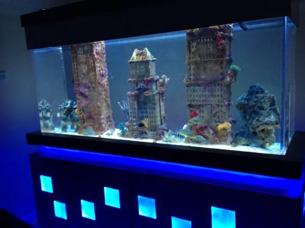 Fish Tank Nyc : ... Decor Fish Tank Nature Aquarium Themed Fish Tank Aquarium. Treffi.co