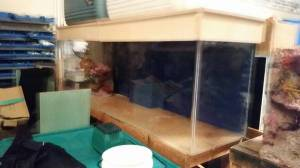 Fish tank aquarium with stand canopy 2500 east for Used fish tanks for sale on craigslist