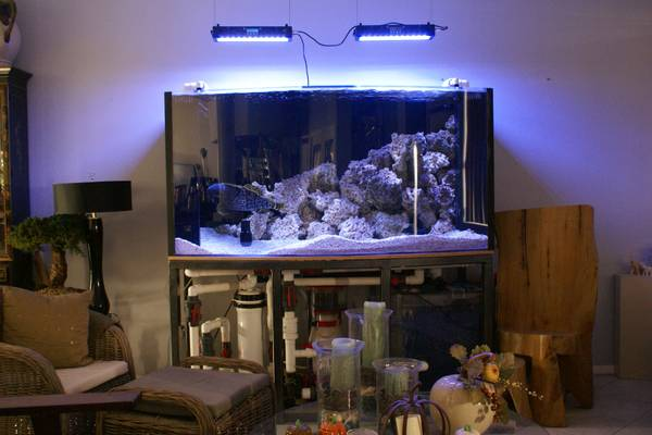 300 gallon bow front atm built acrylic aquarium 4900