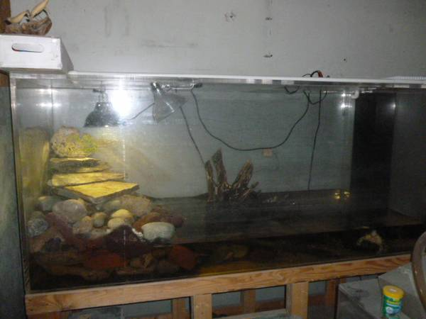 Page 26 giant aquariums for Used fish tanks for sale on craigslist