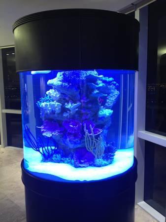 100 gallon fish tank fish aquariums for sale 2017 fish for 100 gallon fish tanks