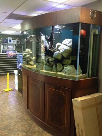400 gallon bow front aquarium 3500 austin tx giant for Fish store austin