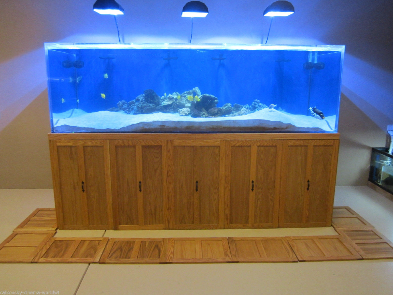 900 Gallon Tenecor Monster Aquarium Reef Fish Tank Salt