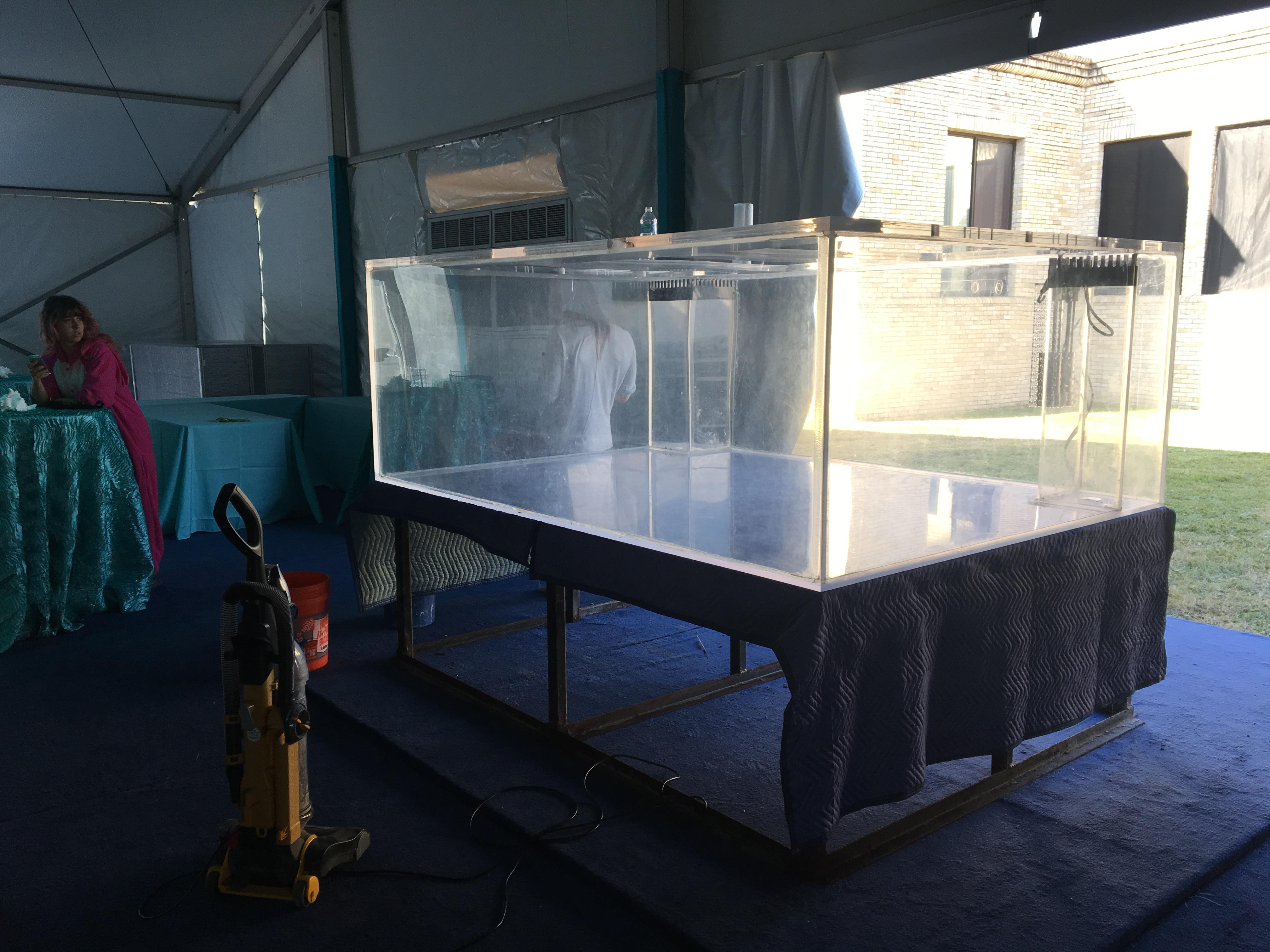 1150gal Austin Tx 5900 Giant Aquariums
