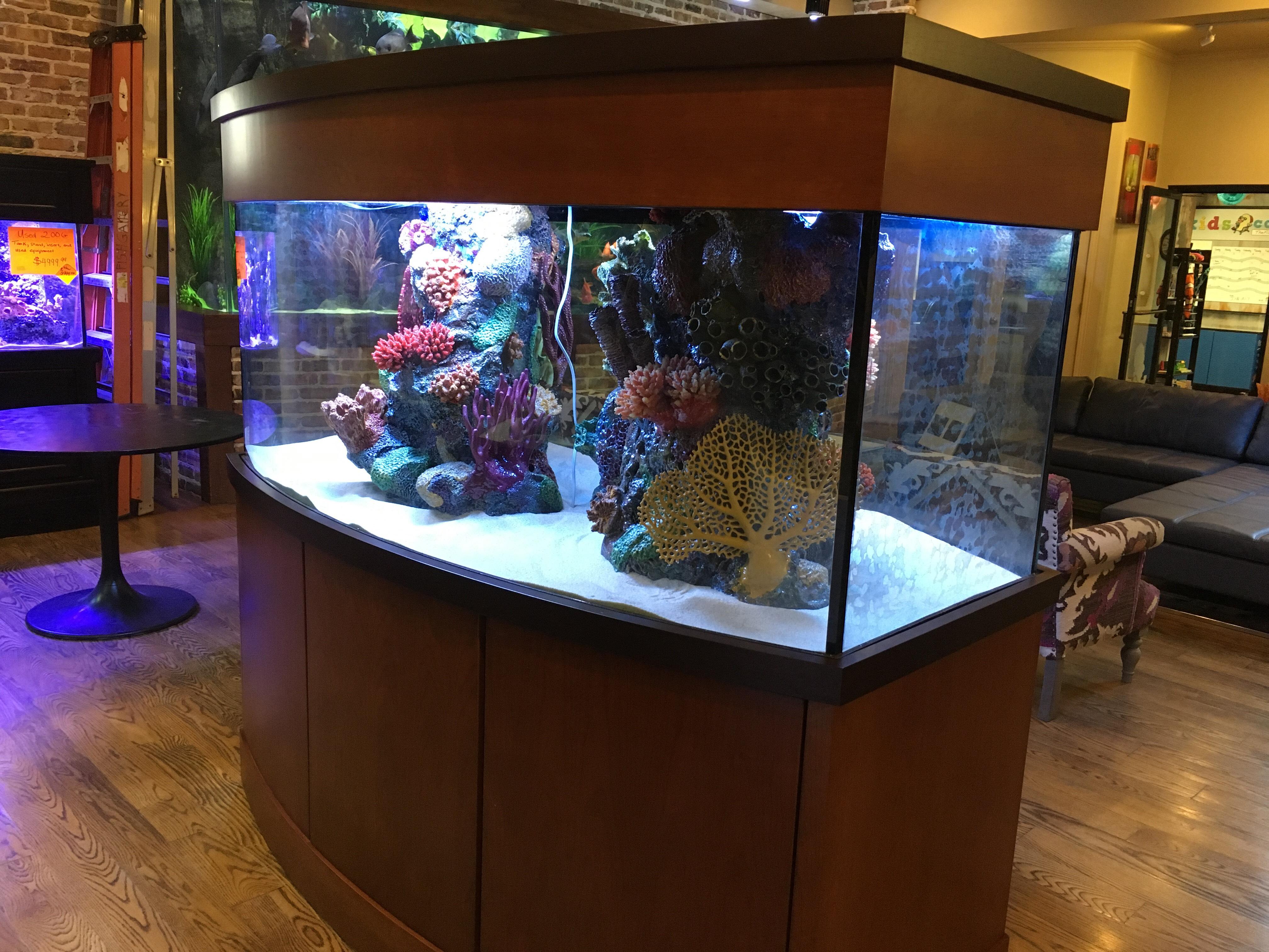 375 gallon texas giant aquariums for Fish tanks craigslist