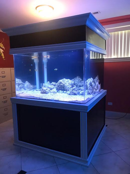 giant aquariums